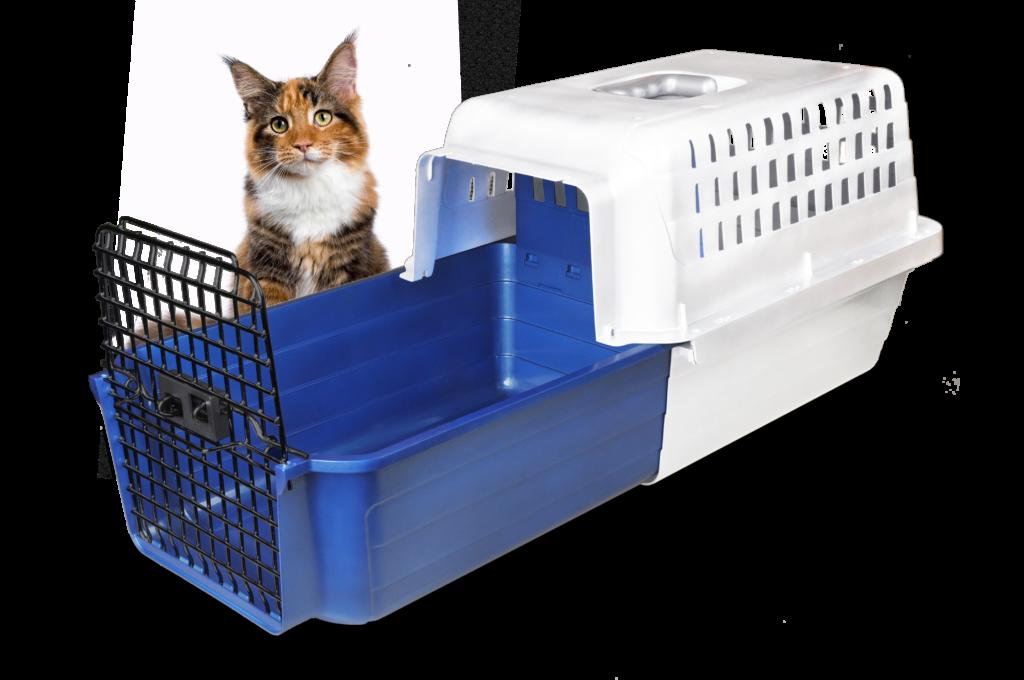 Calm_Carrier-3-4_w-cat_v1-1024x680-1