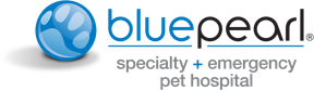 logo-bluepearl